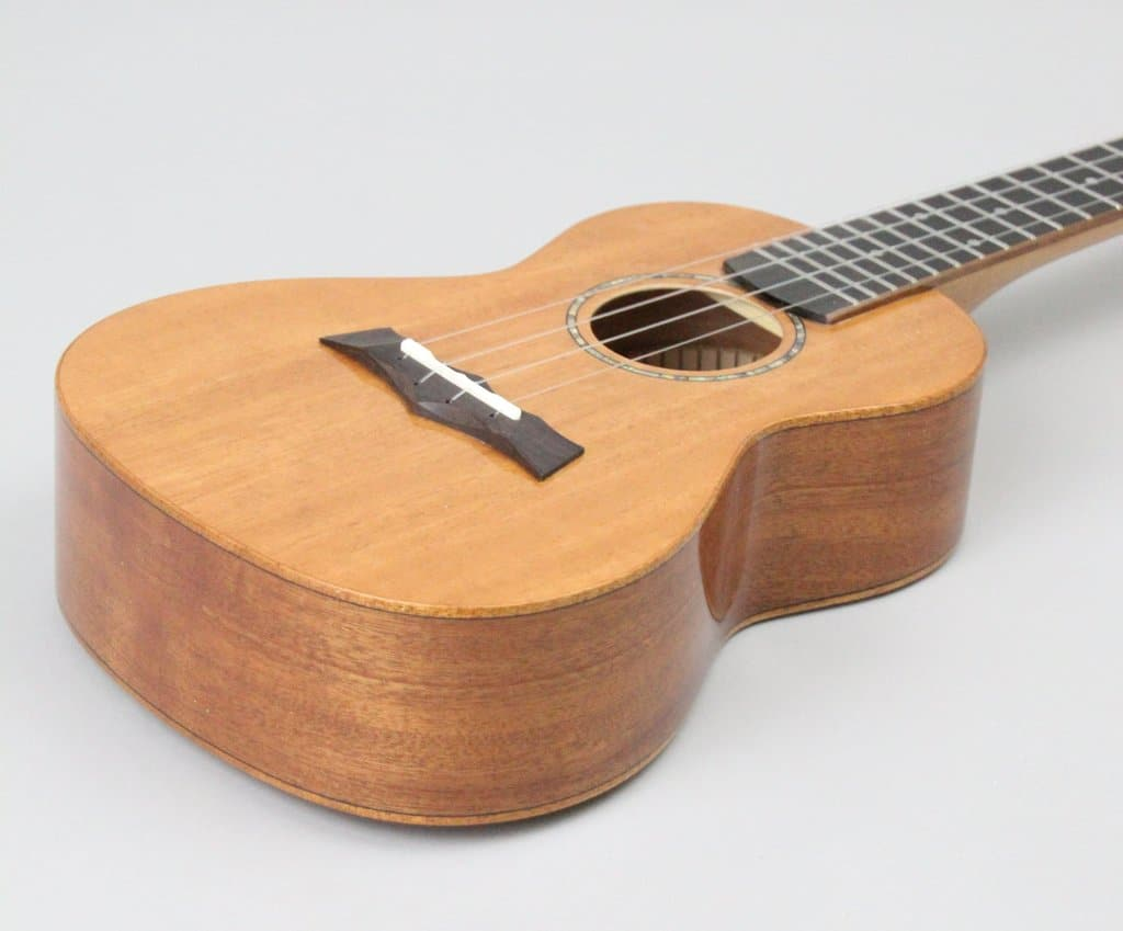 10 Impressive Concert Ukuleles to Bring the Hawaiian Spirit to Your Music