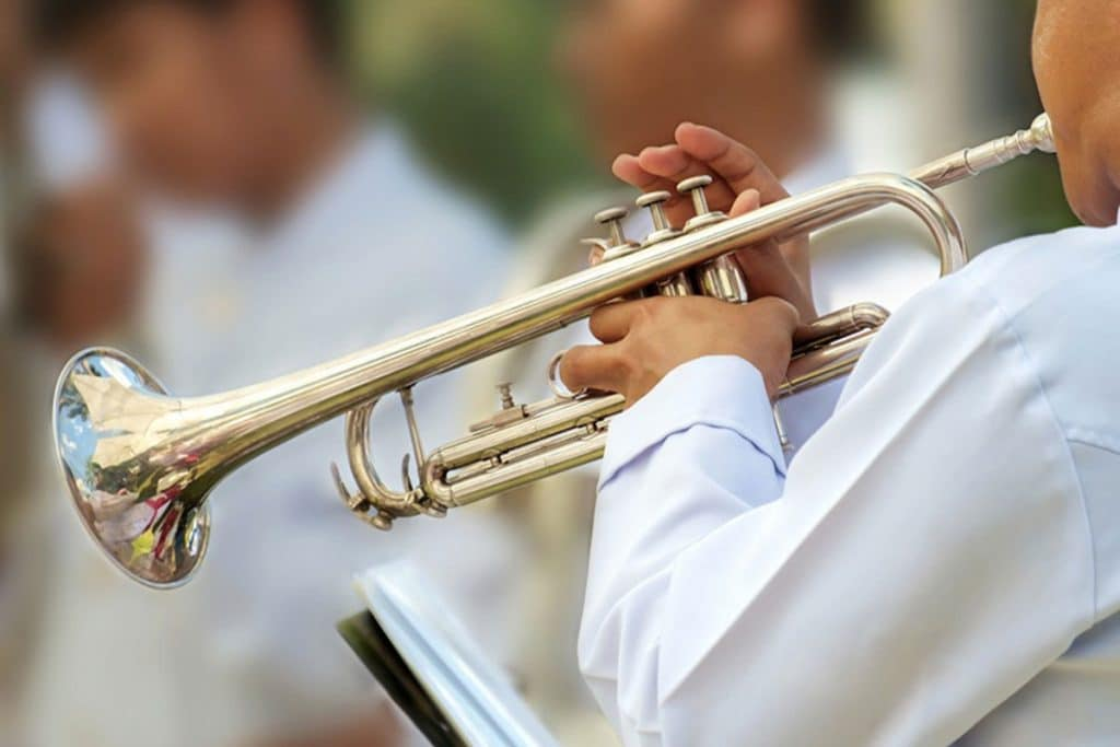 5 Gorgeous Professional Trumpets for Experienced Musicians