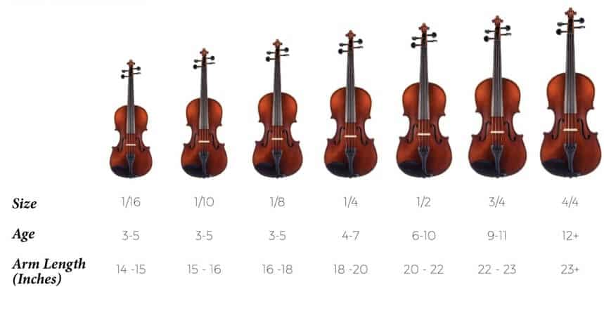 Types of Violins Explained