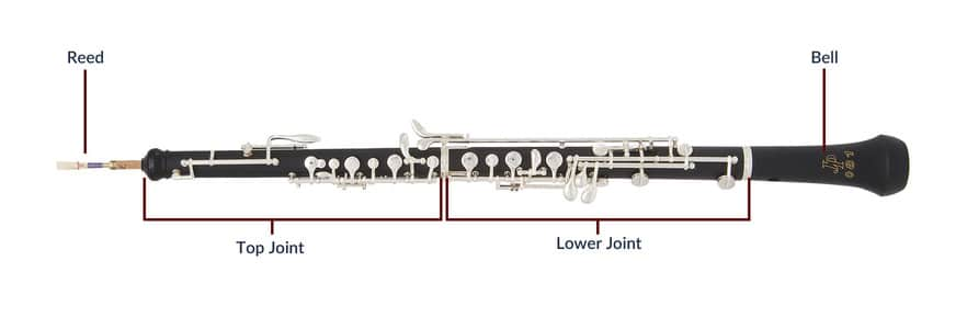 Oboe vs Bassoon: Differences and Similarities